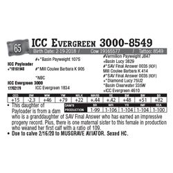 Lot - 65 - ICC Evergreen 3000-8549
