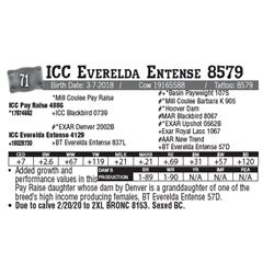Lot - 71 - ICC Everelda Entense 8579