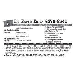 Lot - 74 - Icc Ester Erica 6378-8541