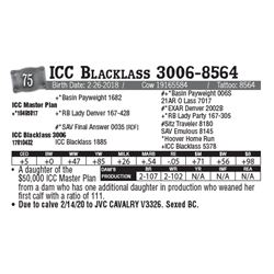 Lot - 75 - ICC Blacklass 3006-8564