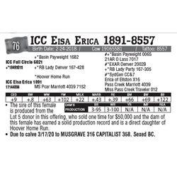 Lot - 76 - ICC Eisa Erica 1891-8557
