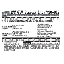 Lot - 84 - ICC GW Forever Lady 730-819