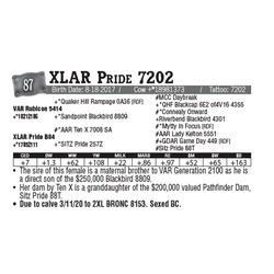 Lot - 87 - XLAR Pride 7202