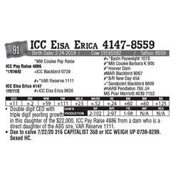 Lot - 91 - ICC Eisa Erica 4147-8559