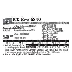 Lot - 113 - ICC Rita 5240