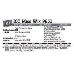 Lot - 121A - ICC Miss Wix 9651