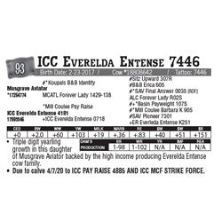 Lot - 93 - ICC Everelda Entense 7446