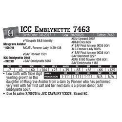 Lot - 94 - ICC Emblynette 7463