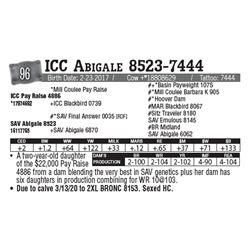 Lot - 96 - ICC Abigale 8523-7444