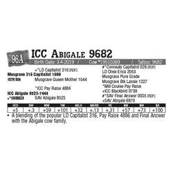 Lot - 96A - ICC Abigale 9682