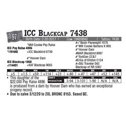 Lot - 97 - ICC Blackcap 7438