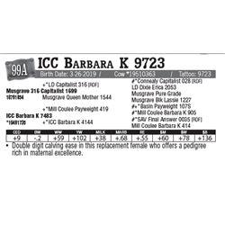 Lot - 99A - ICC Barbara K 9723