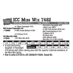 Lot - 100 - ICC Miss Wix 7482