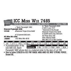 Lot - 101 - ICC Miss Wix 7485
