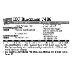 Lot - 102 - ICC Blacklass 7486