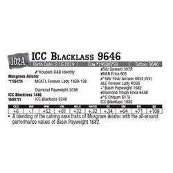 Lot - 102A - ICC Blacklass 9646