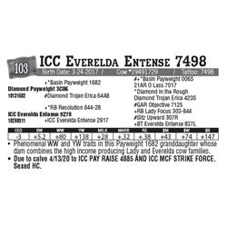 Lot - 103 - ICC Everelda Entense 7498