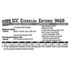 Lot - 103A - ICC Everelda Entense 9660