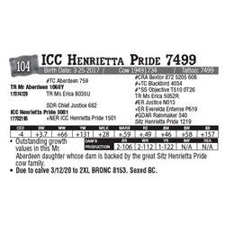 Lot - 104 - ICC Henrietta Pride 7499