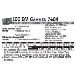 Lot - 105 - ICC BV Gammer 7484