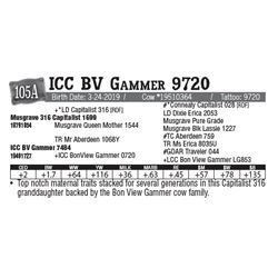 Lot - 105A - ICC BV Gammer 9720