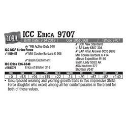 Lot - 109A - ICC Erica 9707