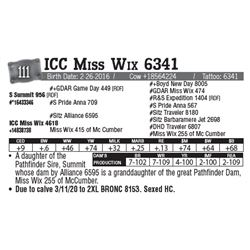 Lot - 111 - ICC Miss Wix 6341