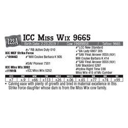 Lot - 123A - ICC Miss Wix 9665