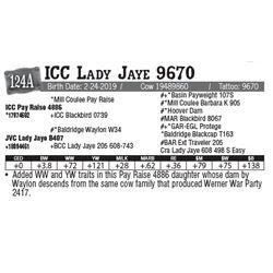 Lot - 124A - ICC Lady Jaye 9670
