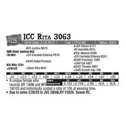 Lot - 126 - ICC Rita 3063
