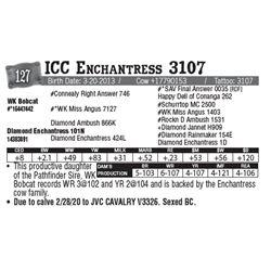 Lot - 127 - ICC Enchantress 3107