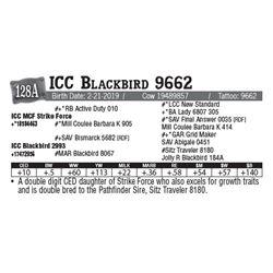 Lot - 128A - ICC Blackbird 9662