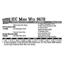 Lot - 129A - ICC Miss Wix 9678
