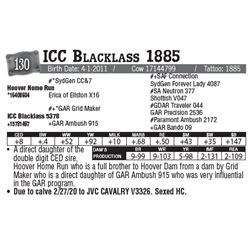 Lot - 130 - ICC Blacklass 1885