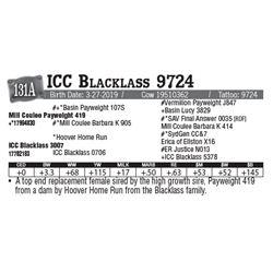 Lot - 131A - ICC Blacklass 9724