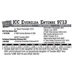Lot - 132 - ICC Everelda Entense 9713