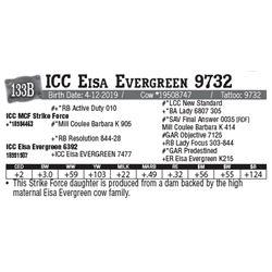 Lot - 133B - ICC Eisa Evergreen 9732
