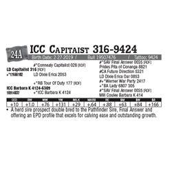 Lot - 24A - ICC Capitaist 316-9424