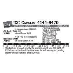 Lot - 25A - ICC Cavalry 4144-9470
