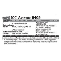 Lot - 44A - ICC Aviator 9409