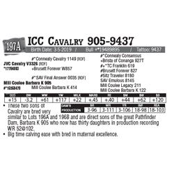 Lot - 197A - ICC Cavalry 905-9437