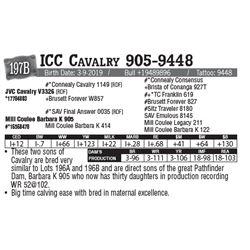 Lot - 197B - ICC Cavalry 905-9448