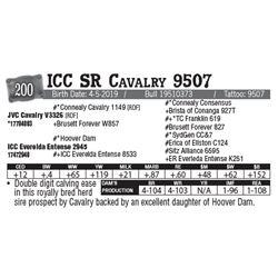 Lot - 200 - ICC SR Cavalry 9507