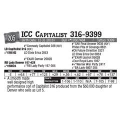 Lot - 205 - ICC Capitalist 316-9399