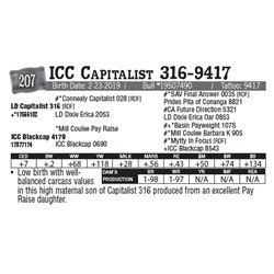 Lot - 207 - ICC Capitalist 316-9417
