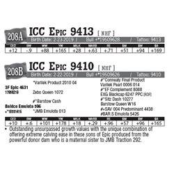 Lot - 208A - ICC Epic 9413 [ NHF ]