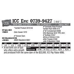Lot - 209 - ICC Epic 0739-9427 [ NHF ]
