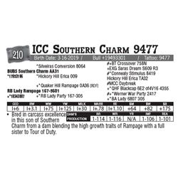 Lot - 210 - ICC Southern Charm 9477