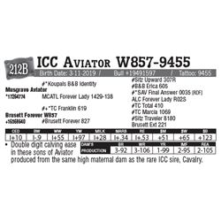 Lot - 212B - ICC Aviator W857-9455
