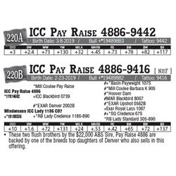 Lot - 220A - ICC Pay Raise 4886-9442